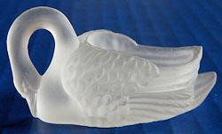 Clear Swan